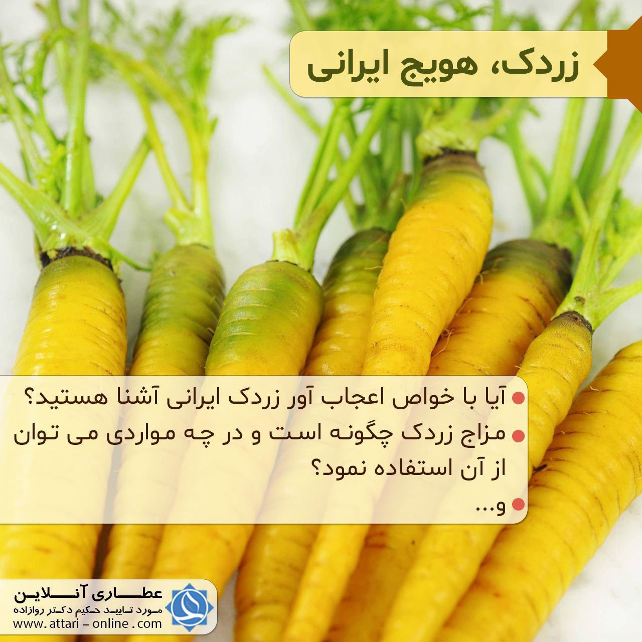 photo 2018 08 18 11 32 52 زردک،هویج ایرانی