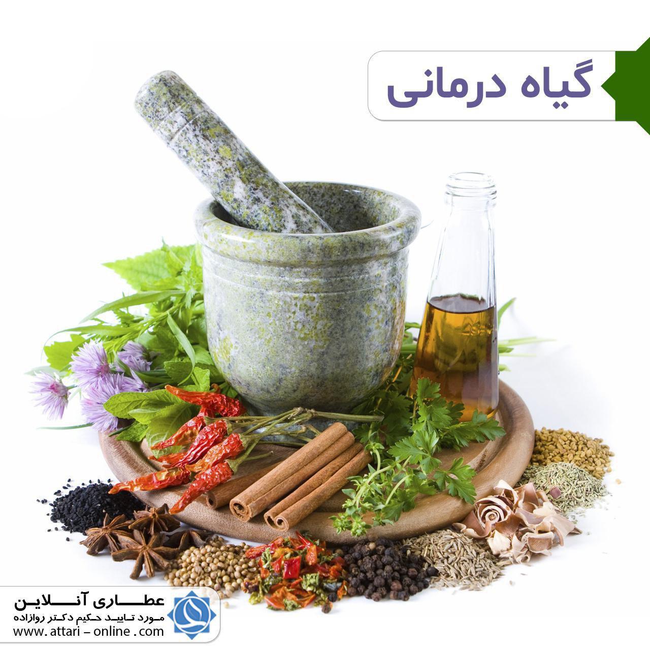 photo 2018 09 22 16 44 52 گیاه درمانی و سایر درمان ها در طب سنتی