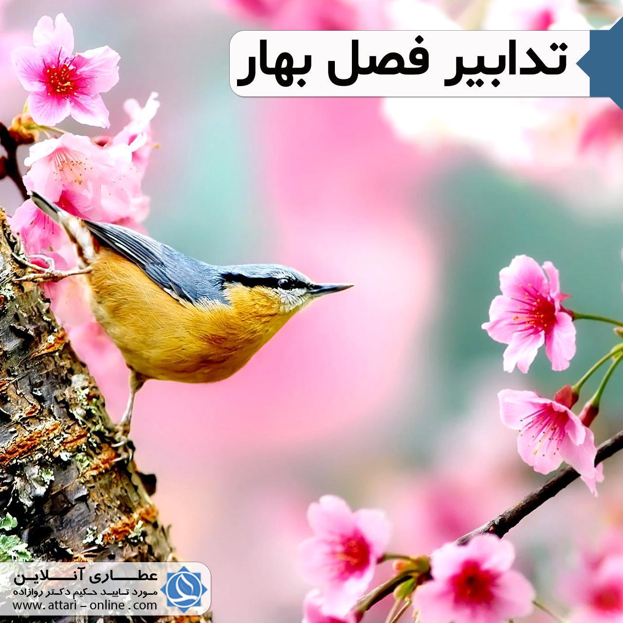 بهار ک2 تدابیر فصل بهار