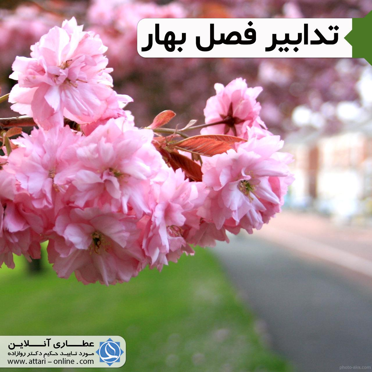 ک بهار فصل پاکسازی اخلاط فاسد